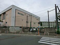 町田市立 町田第二中学校 距離約200m