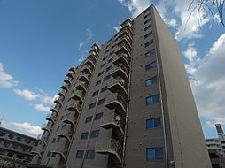 HOUSE・北柏2号棟〜ハウスキタカシワ2ゴウトウ〜[601号室]の外観