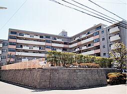 江田ロビニア 406