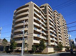 アルファグランデ成田弐番街10階 美室物件