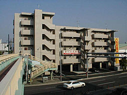 愛媛県松山市空港通2丁目の賃貸マンションの外観
