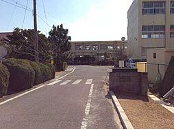 森岡小学校
