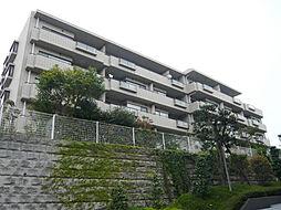 藤和江ノ島ホームステージ2 5F