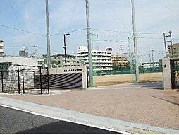 名古屋市立神丘中学校 299m(徒歩約4分)