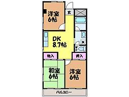 愛媛県松山市枝松6丁目の賃貸マンションの間取り