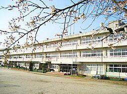 学区:宍戸小学...