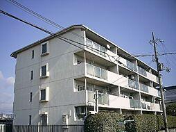 マッシュハイムII[2階]の外観