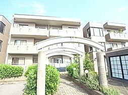 松戸ハイツ[101号室]の外観
