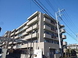 プリムローズ上福岡[206号室]の外観