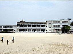 新入小学校校区...