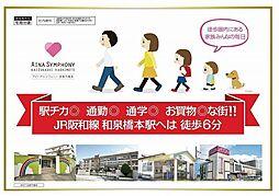 貝塚市橋本