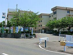 杉本小学校
