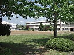 大沢中学校(徒...
