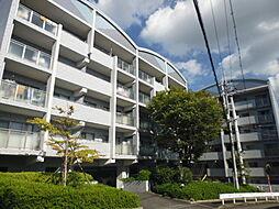 レノ金剛津々山台 中古マンション