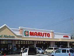 マルト泉店