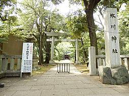 氷川神社700...