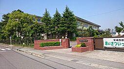 安城西部小学校