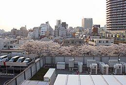 春が楽しみになるバルコニーからの眺望