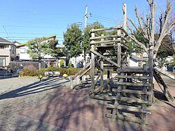 中新井公園3