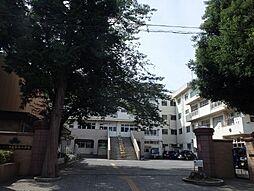 市立木崎小学校...