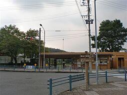 公園 東山公園...