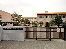白岡東小学校