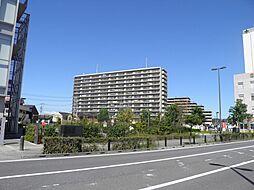 セルテシティオ湘南辻堂[1305号室]の外観