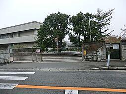 中学校松本中学...