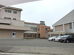 津幡中学校 1...