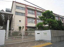 平野西小学校 ...