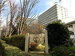 ニューシティ東戸塚 東の街4号館 中古マンション