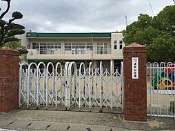 清星幼稚園