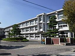 豊田市立堤小学...