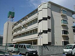 津門川ハイツ[402号室]の外観