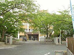 三雲小学校