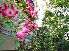 マンション周辺には緑やお花もあり、駅近くというイメージを感じさせません。自然も豊かな住環境です。