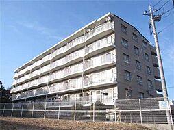 ウェストヒルズ[5階]の外観