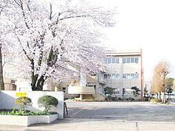 学区:吉沢小学...