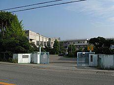 小学校池田小学校まで508m