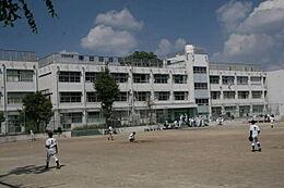 用賀中学校(1010m)