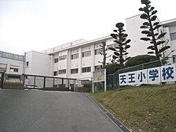 市立天王小学校...