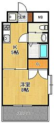セレーノルーチェ[3階]の間取り