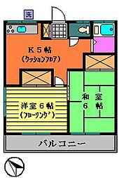 第2柏新荘[203号室号室]の間取り