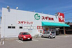 スギ薬局市場店
