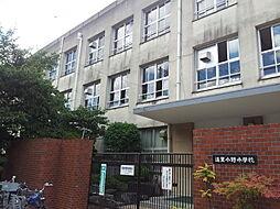 遠里小野小学校...