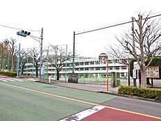 町田市立金井小学校 距離約1600m