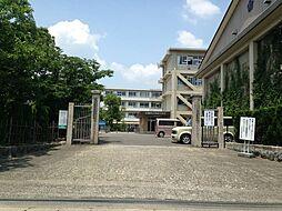 荒崎小学校
