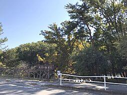竜美ヶ丘公園 ...