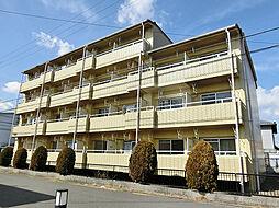 滋賀県甲賀市水口町東名坂の賃貸マンションの外観