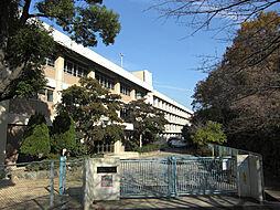 朝霧中学校(1...